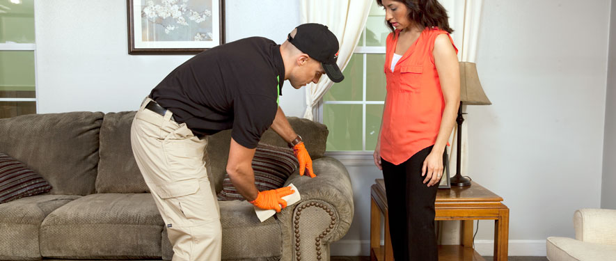 Landover, MD carpet upholstery cleaning